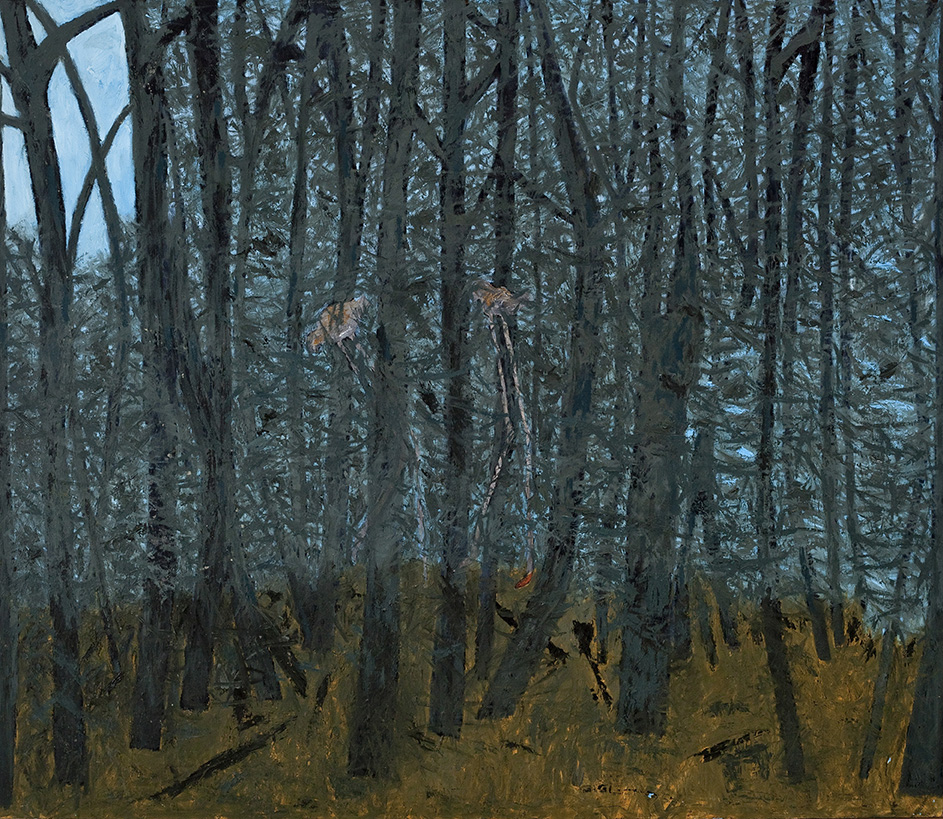 Forest With Birds